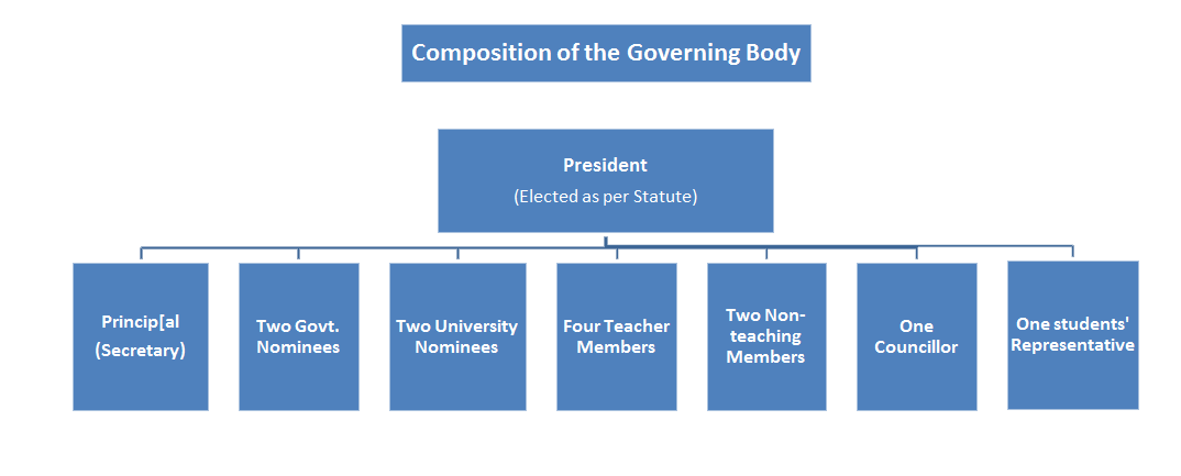governing body structure.jpg
